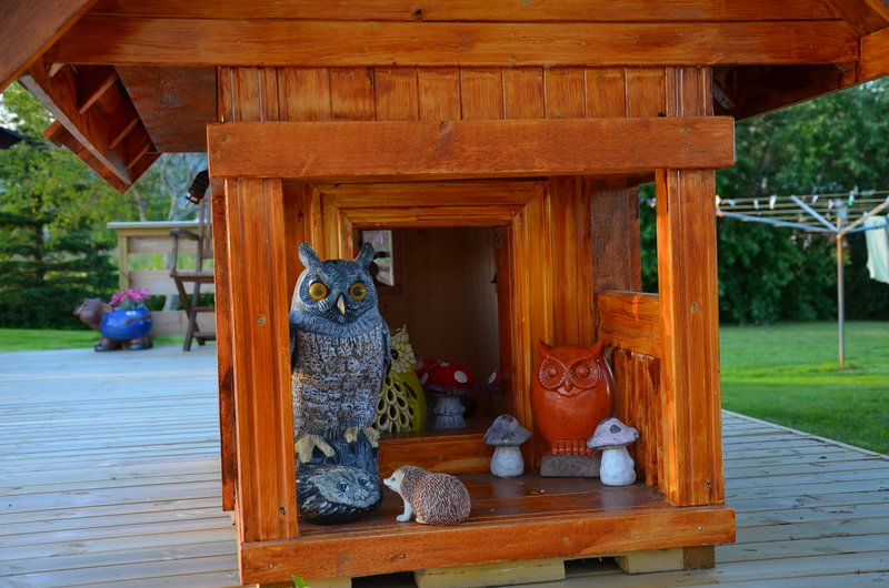 Owls, mosheim camping