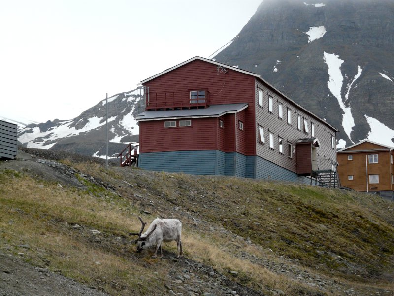 Spitsbergen Guesthouse accomodation