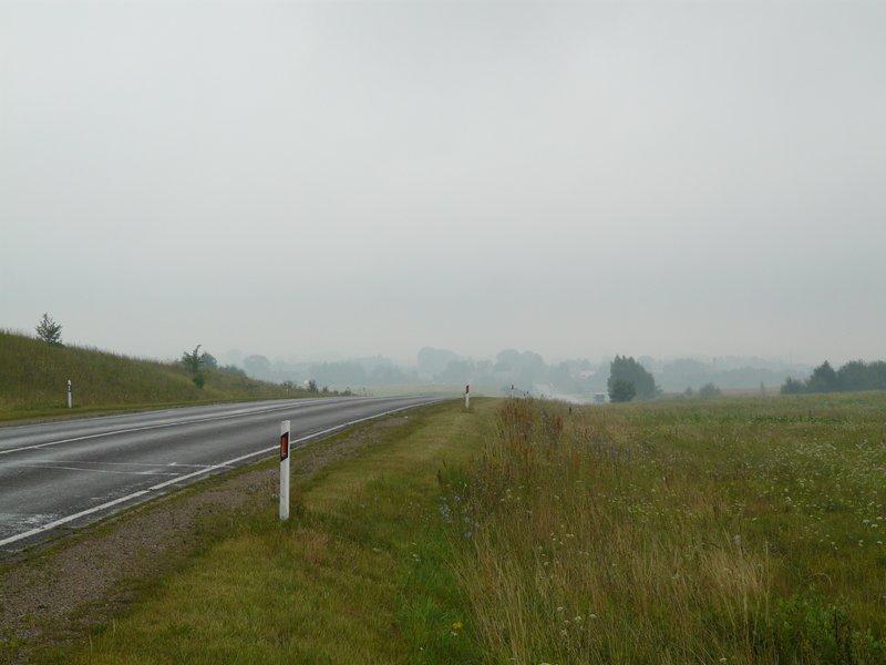 Damp Lithuanian Roads