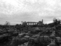 Volubilis basilica