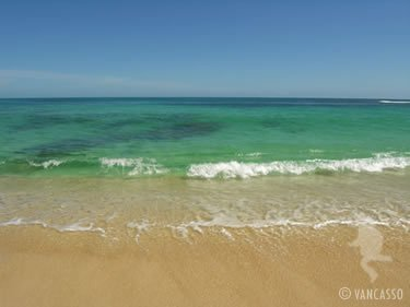 Crystal Clear Water at Kaena Point Beach