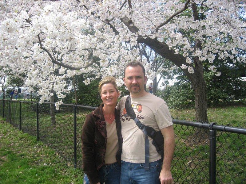 Cherry Blossom Festival in D.C.