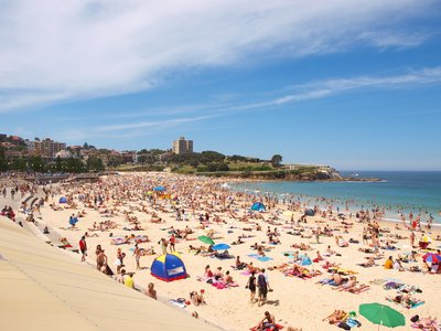 Christmas at Coogee