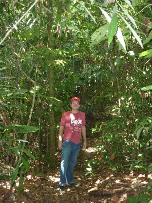 Mike in the jungle