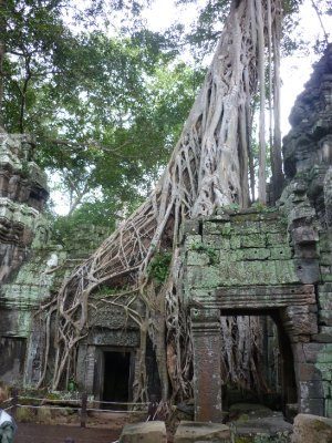 raiders of the lost ark anyone- siem reap