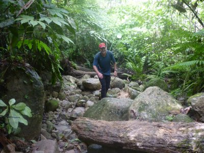 Stream crossing jungle trek.