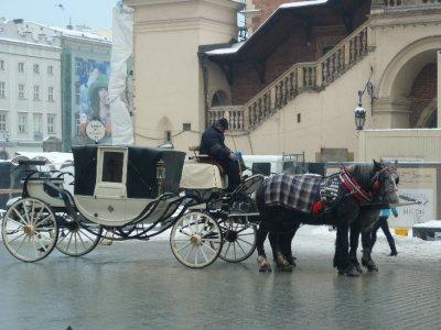 Rynek Glovny Krakow- Market square