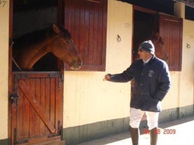 hernan_horse.jpg