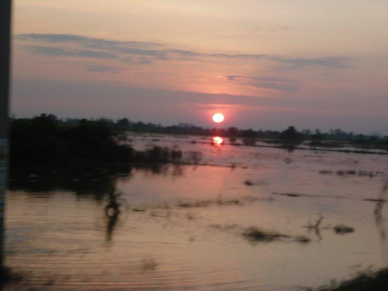 Cambodia rice field sunset