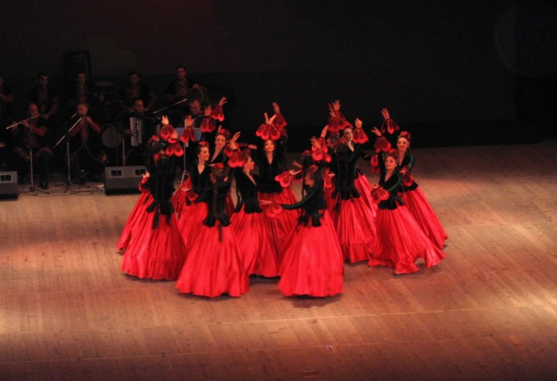 Poppies dance