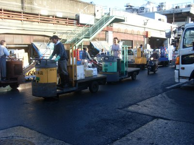 Death buggies in the fish market