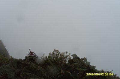 Volcan Poas 149
