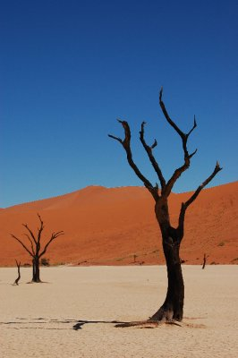 Deadvlei colours