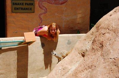 Me and meerkat