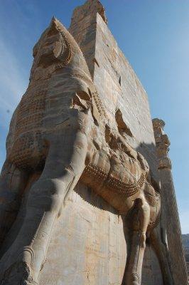 Persepolis 7