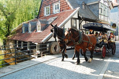 Horse and carriages in Goslar