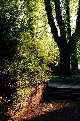 Park in Goslar