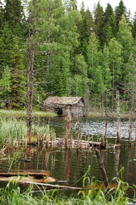 A shack by a lake