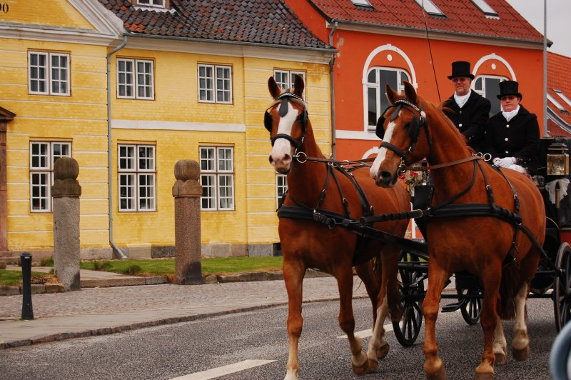 Horse Carriage in Faaborg