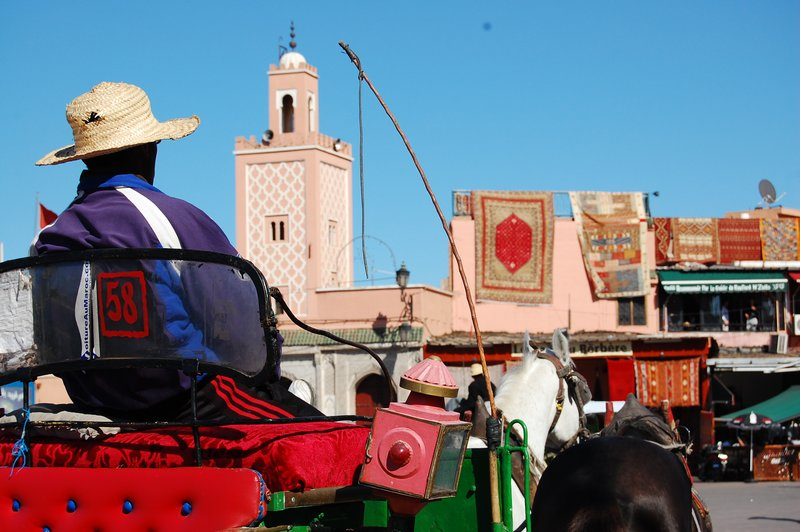Carriage in Marrakesh