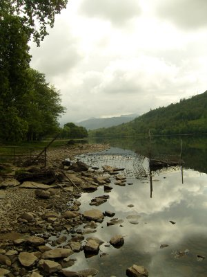 View at the Loch