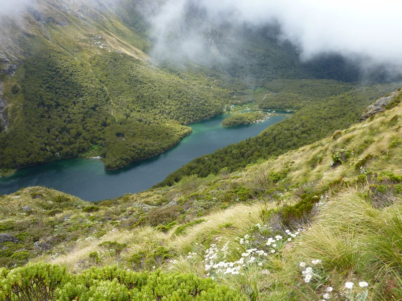 On the Routeburn Track