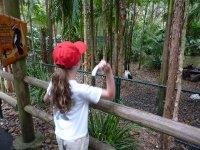 Zoo_272.jpg