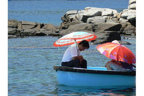 Umbrellas in the sun