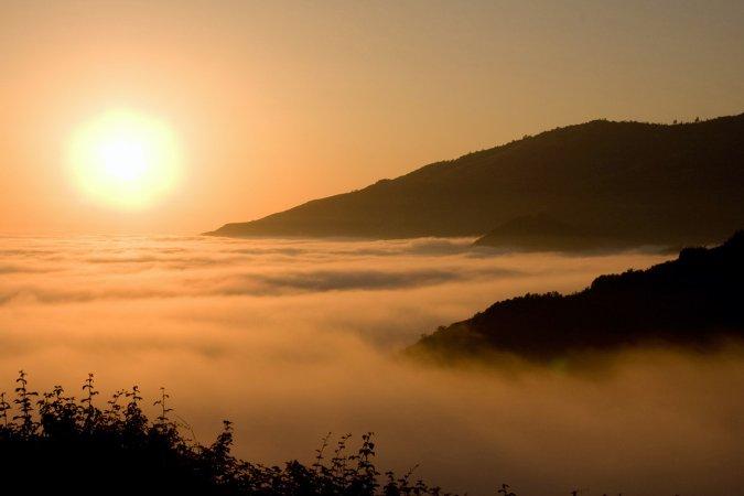 Highway 1 - dem Nebel entfliehen...