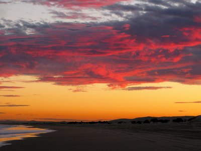Beautiful sunset at the endless Stockton Beach, NSW Australia
