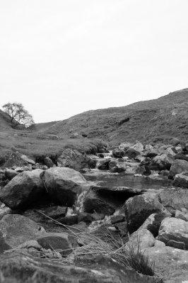 Beck above Reeth, Swaledale