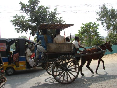 Horse Rickshaw