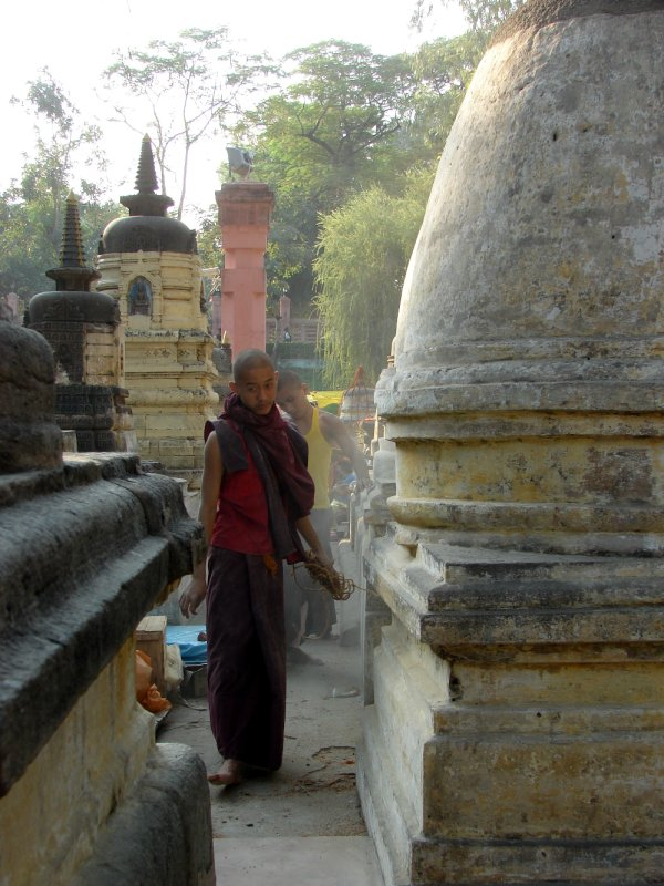 Young monk sweeping around stupas
