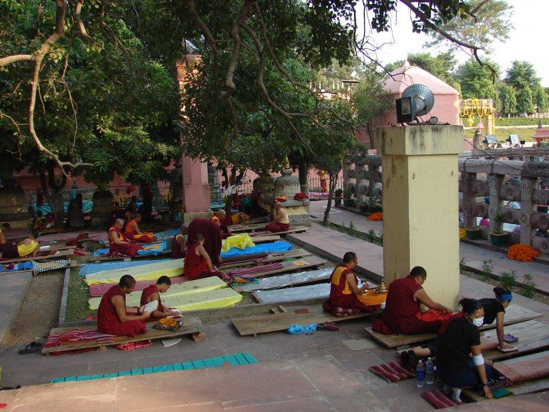 Prostrating toward the Mahabodhi Temple