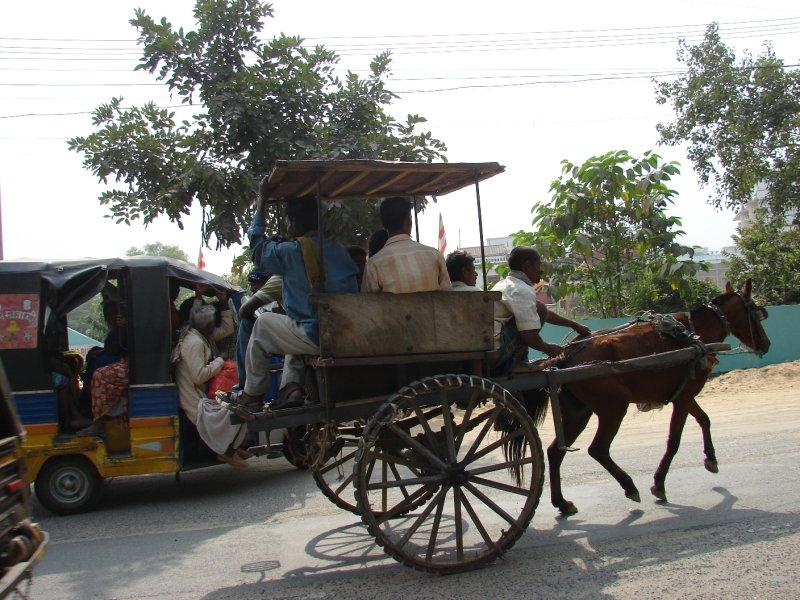 Horse Rickshaw