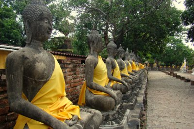 buddha's sculptures around a temple in ayutthaya