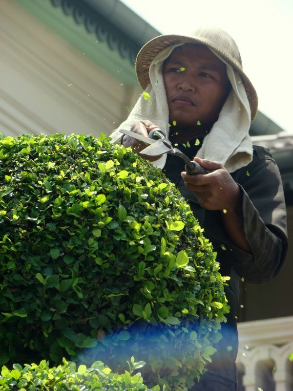 gardener in grand palace