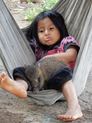 90_girl_and_pig_in_hammock.jpg
