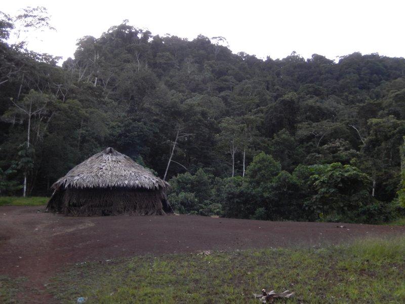large_Toca_s_house__2_.jpg