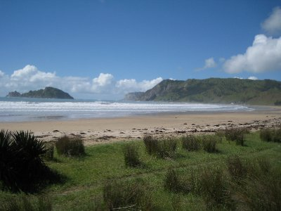The beach at  Anaura Bay