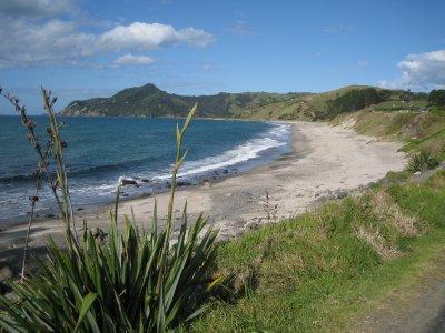 beach in Kuaotunu