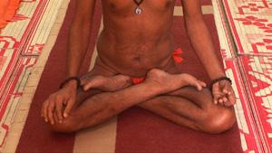 Yoga Master Haridwar sitting