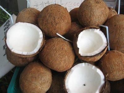 Jeju coconuts