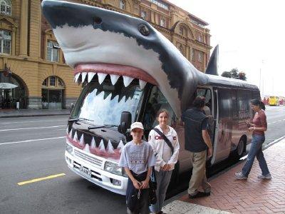 Auckland-B..ark-bus.jpg