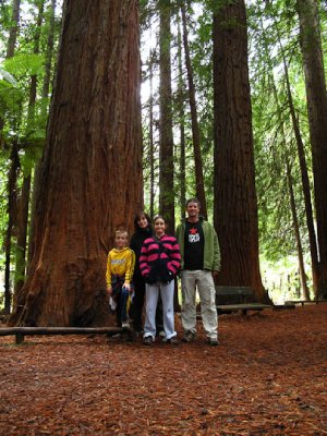 Cronsberry Family in Redwood forest Rotorua