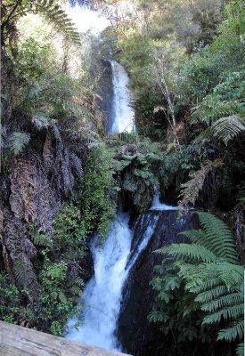 Rotorua_Bu..e_falls.jpg