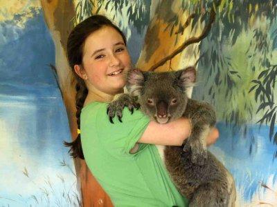 australia Bronte with Koala