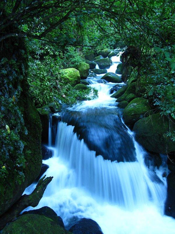 Waiere-Falls-creek