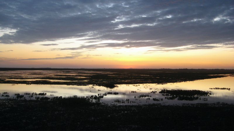 Sunset over the Swamp