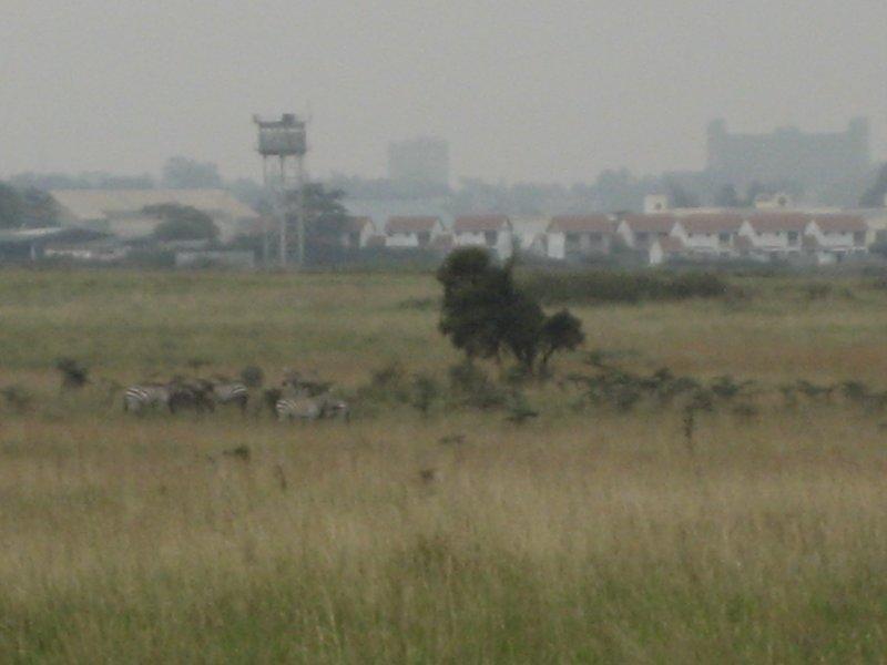 Africa 945